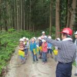 木質バイオマスによる地域循環