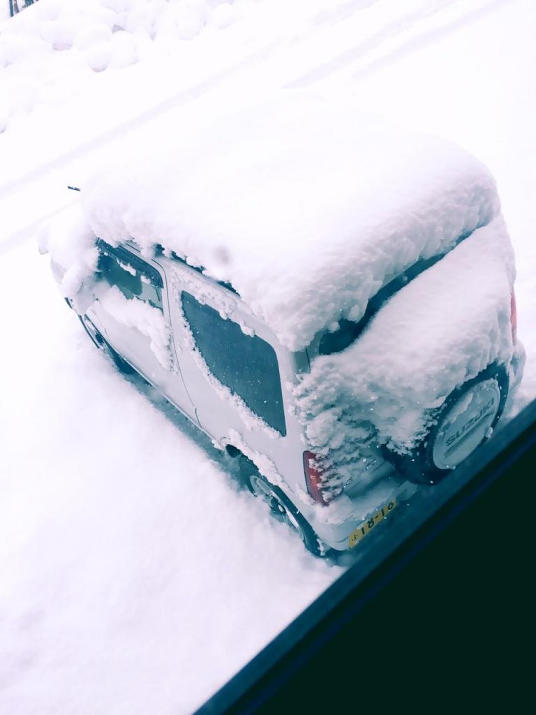 雪、雪、雪・・・